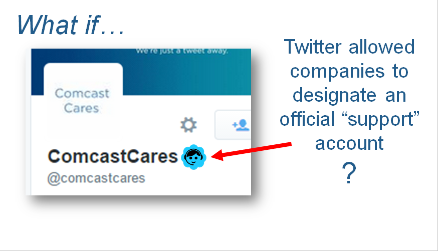 Twitter Support Accts - LI-Title