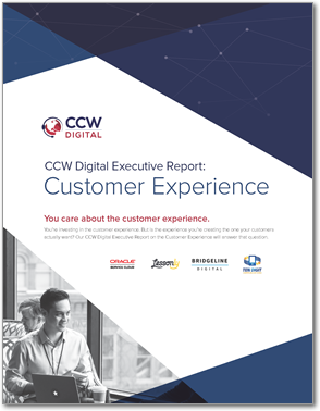 Executive Report on Customer Experience