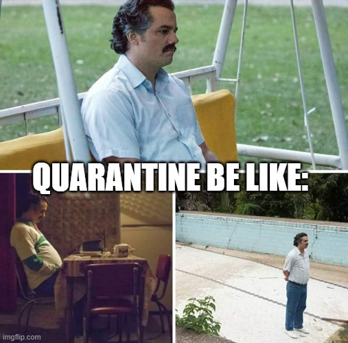 quarantine-be-like-lonely-pablo-escobar
