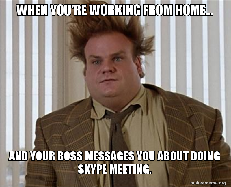when-youre-working-from-home-and-your-boss-messages-you-about-skype
